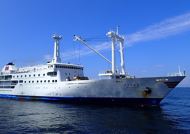 新島へ向かう大型客船